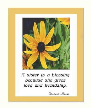 www.DianeHei... Poems About Daisy Flowers